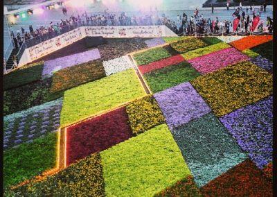 Съемки закрытия фестиваля цветов на красной площади